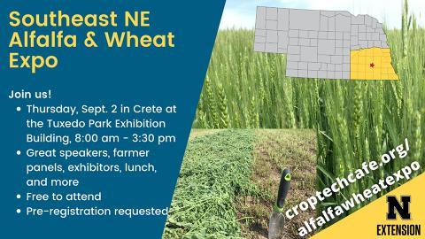 Alfalfa and Wheat Expo banner
