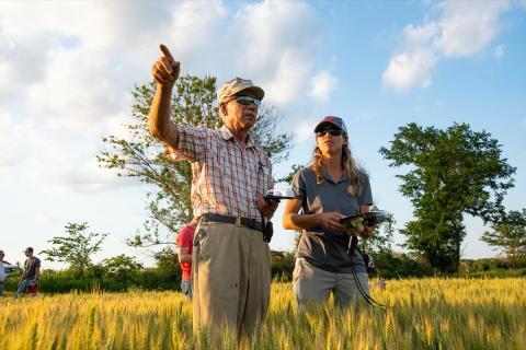 Farmers inspecting a field