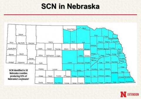 Nebraska map showing counties where soybean cyst nematode has been confirmed