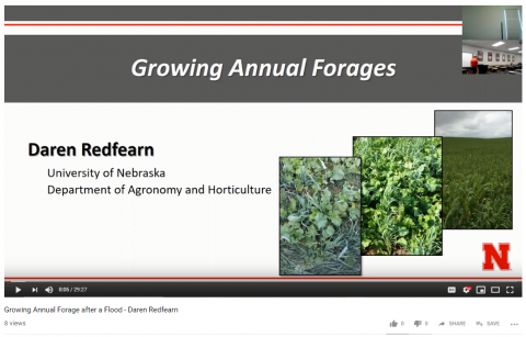 Screen show of the video, Growing Annual Forages, one of five available from the April 9, 2019 post-flood meeting.