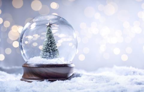 Snow globe featuring an evergreen
