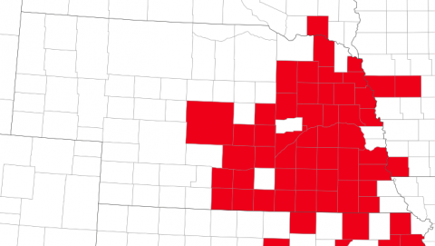 map showing southern rust in 45 Nebraska counties
