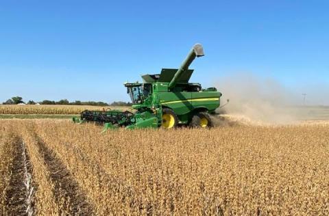 combine harvesting soybean