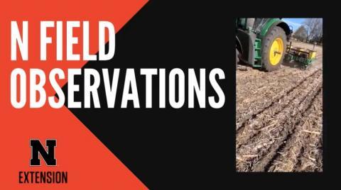 N Field observation poster image