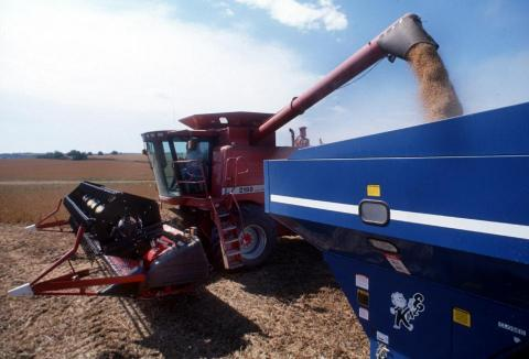 harvesting unloading soybeans