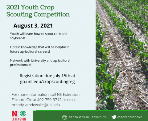 Youth Crop Scouting Competition flyer