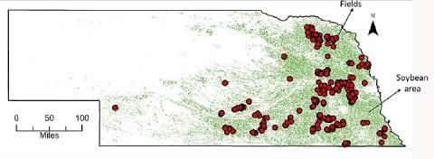 Nebraska sample field map