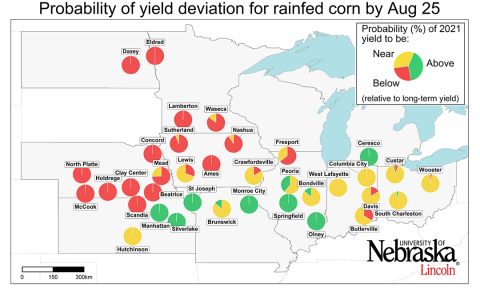 Corn yield forecast map